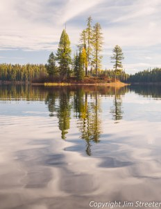 Trees reflect in the shimmering water of Lake Alva in the Seeley Swan valley of western Montana. This image was captured from a kayak.