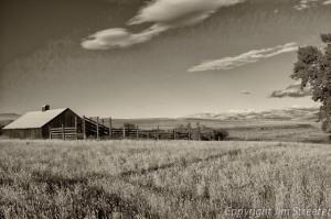 Abandoned barn on a former ranch near Choteau, Montana.