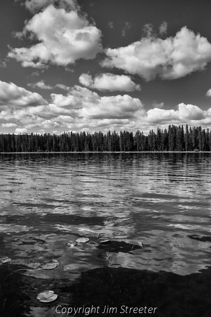 Early summer clouds over Seeley Lake reflect in the water beyond the flotilla of lily pads. The image was taken from a kayak.