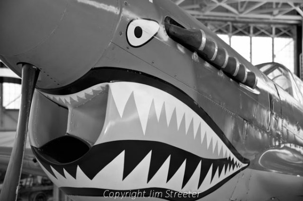 A P-40 Warhawf from World War II sits in the Pacific Aviation Museum Pearl Harbor on Ford Island in Honolulu, Hawaii.