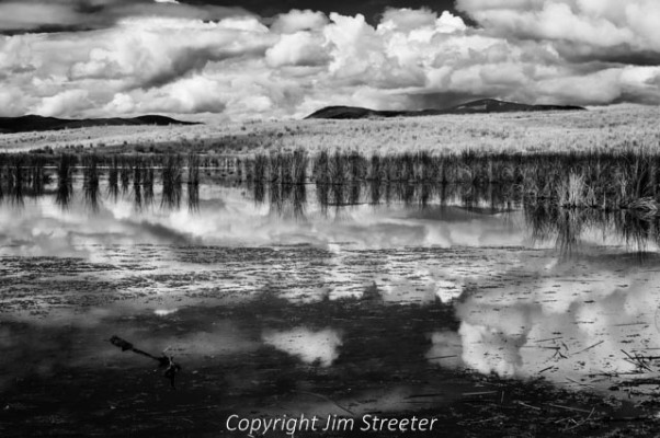 Clouds reflect in a kettle pond outside Ovando, Montana on a summer afternoon. The kettle ponds in this area were created about 10,000 years ago from the movement of glaciers during the last ice age.