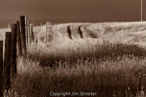 The evening sun stretches across a farm field outside of Choteau, Montana along the Rocky Mountain Front in central Montana.