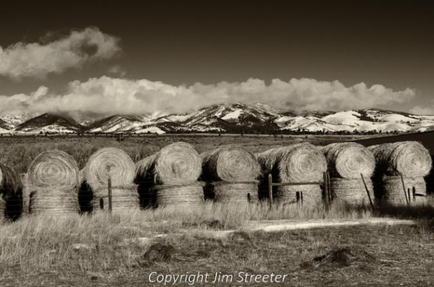 Stackyard of hay on a ranch in the Paradise Valley of Montana. The hay is rolled and stacked for later use feeding the cattle.