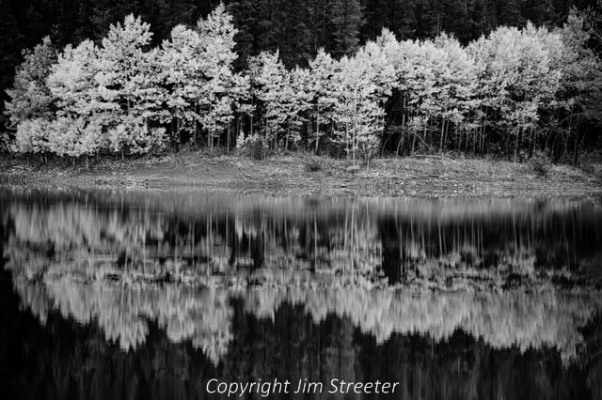 Early fall reflection of Wedge Pond in Alberta Canada. Great day for a photo, calm waters and great colors in the trees.
