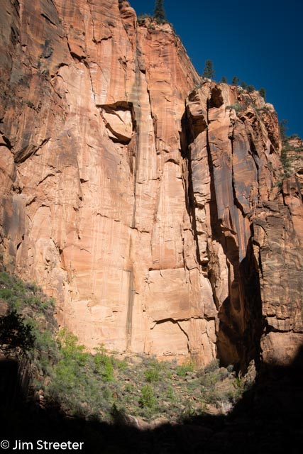 Morning sun makes it way down the rock walls of the canyon in Zion National Park in Utah.