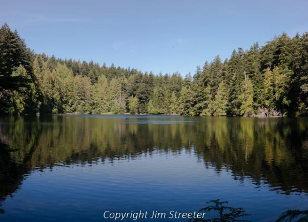 Trees reflect in the larger of the Twin Lakes in Moran State Park on Orcas Island, Washington on a summer afternoon.