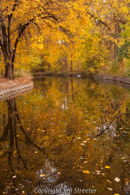 Brillian fall foliage reflects in a pond at Julia Davis Park in Boise, Idaho.